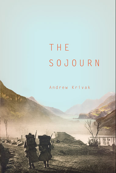 Cover image for The Sojourn
